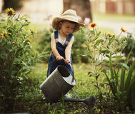 Little boy watering flowers Stock Photos