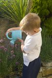 Little boy watering herb garden. White caucasian male child watering herb garden. Small toy watering can showering water onto thirsty plants royalty free stock photo