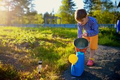 Little boy watering plants in garden at summer day Stock Photography