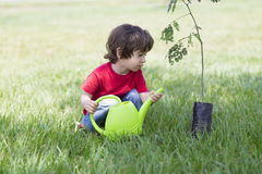 Little boy watering plants Outdoors royalty free stock photography