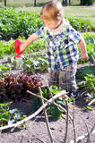 Little boy watering the plants Royalty Free Stock Images