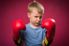 Little boy wearing  boxing gloves Royalty Free Stock Photos