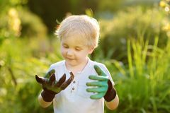 Little boy wearing garden gloves having fun during work in domestic garden royalty free stock images