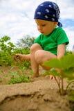 Little boy weeding garden. In hot, summer day Stock Photo