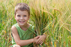 Little boy in a wheat field Royalty Free Stock Photography