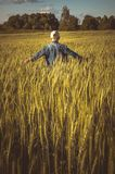 Little boy in a wheat field at night Stock Photography