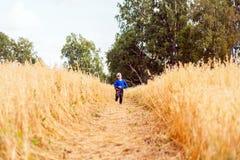 Little boy on a wheat field royalty free stock image