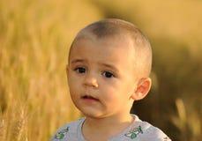 Little boy in wheatfield Royalty Free Stock Photo