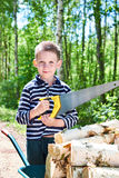 Little boy with wheelbarrow sawing wood in forest Royalty Free Stock Photo
