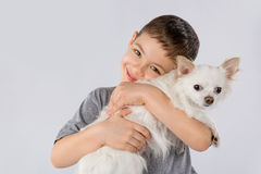 Little boy white Chihuahua dog isolated on white background. Kids pet friendship. Portrait of boy with white Chihuahua dog isolated on white background. Kids pet royalty free stock image