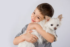 Little boy white Chihuahua dog  on white background. Kids pet friendship Stock Photo