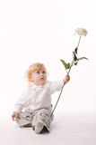 Little boy with white rose Royalty Free Stock Photos