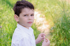 Little boy in a white shirt, against a background of green sprin Stock Photos