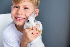 Little boy white Tshirt and tame dwarfish rabbit. Little boy in white Tshirt and tame dwarfish rabbit playing together stock photography