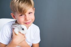 Little boy white Tshirt and tame dwarfish rabbit. Little boy in white Tshirt and tame dwarfish rabbit playing together. Grey wall. copy space royalty free stock images