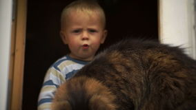 The little boy in the window with a cat. Boy gets upset when the cat walks away. The little boy in the window with a big cat. Boy gets upset when the cat walks stock video footage