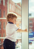 Little boy and window Stock Images