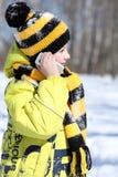 Little boy in a winter park. Little boy calling by phone in a winter park stock photo