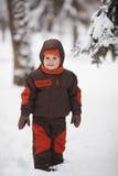 Little boy in winter park Stock Photos