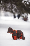 Little boy in winter park Stock Images