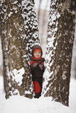 Little boy in winter park Stock Photography