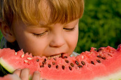 Little Boy With Watermelon Royalty Free Stock Image