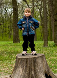 Little boy in wood. The spring, wood, the little boy stand on the stump Stock Images