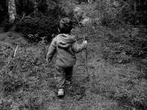 Little Boy in Woods. Little Boy in the woods with a stick in his hand, in black and white Stock Photography