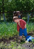 Little boy working in the garden Royalty Free Stock Photo