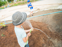 Little boy working planting in the farm outdoor Stock Image
