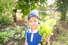 Little boy working planting in the farm outdoor Royalty Free Stock Photography