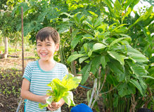 Little boy working planting in the farm outdoor Royalty Free Stock Image