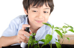 Little boy working with spaying for plant gardening Royalty Free Stock Photography