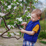 Little boy working in the spring garden Royalty Free Stock Photography