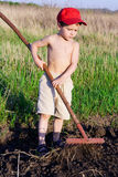 Little boy works with rake Royalty Free Stock Photo