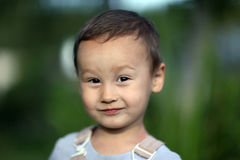 Little boy 3 years old against green grass colors Royalty Free Stock Images