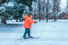 A little boy of 3-5 years old is riding one of children`s toy skis. Winter forest drifts and wood drift on background. A little boy of 4-6 years old is riding royalty free stock images