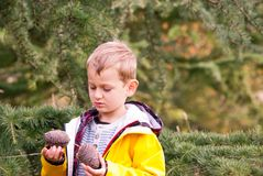 Little boy in a yellow jacket holding two cones stock photo