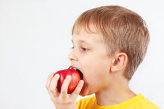 Little boy in a yellow shirt eating red apple Stock Image