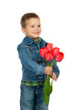 Little boyl with red tulips Stock Photos