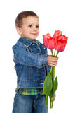 Little boyl with red tulips Royalty Free Stock Images