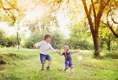 Little boys having fun on a meadow stock images