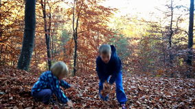 Little boys playing with leaves in forest. Hd video stock footage