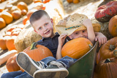 Little Boys Playing in Wheelbarrow at the Pumpkin Patch Royalty Free Stock Photo