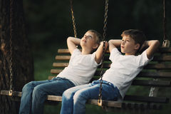 Little boys riding on a swing Royalty Free Stock Images