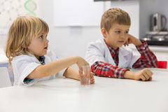 Little boys in the science lab Royalty Free Stock Photos