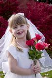 Little Bride 1. Portrait of an adorable little girl posing as a bride holding a bouquet of roses Stock Images