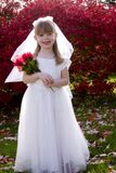Little Bride 1. Portrait of an adorable little girl posing as a bride holding a bouquet of roses Royalty Free Stock Photography