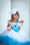 Little bride. A girl in a lush white and blue wedding dress Stock Images