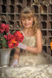 Little bride with tiara Stock Photos